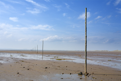 Causeway posts to Holy Island. Northumberland. Landscape photography by Gary Waidson.
